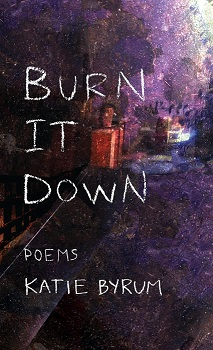burn-it-down-front-cover