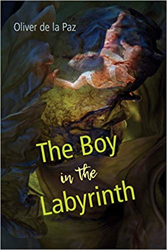 The Boy in the Labyrinth Cover